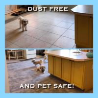 A cute before and after shot of a Chandler dust free tile removal job